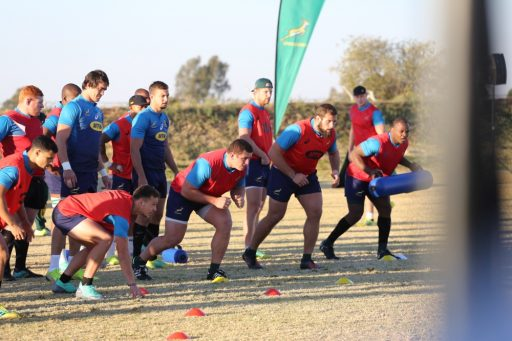 Springboks train ahead of their second test with England
