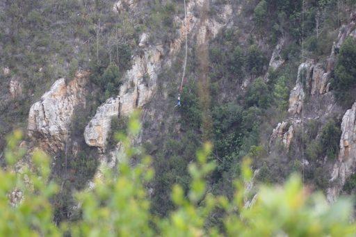Bungee jumping Bloukrans